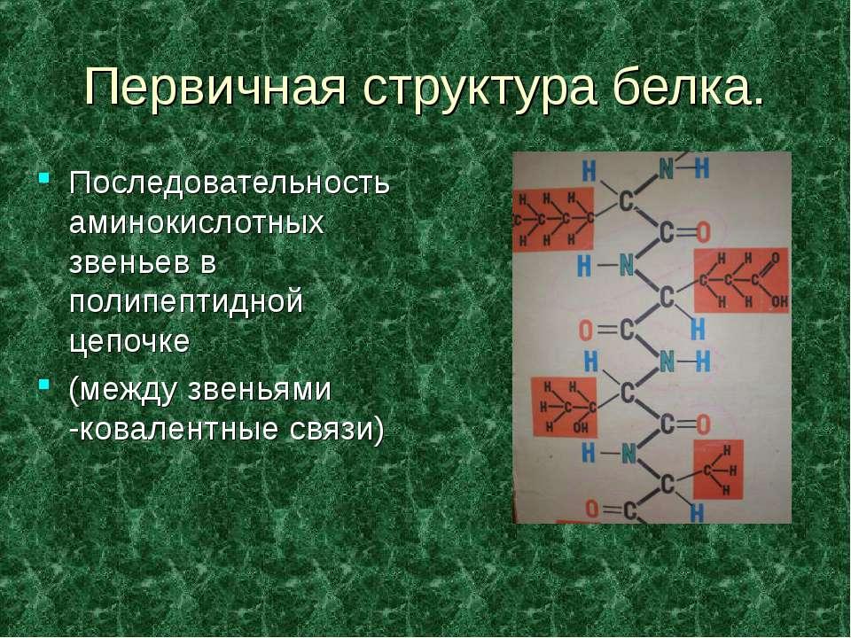 Первичная структура белка. Последовательность аминокислотных звеньев в полипе...