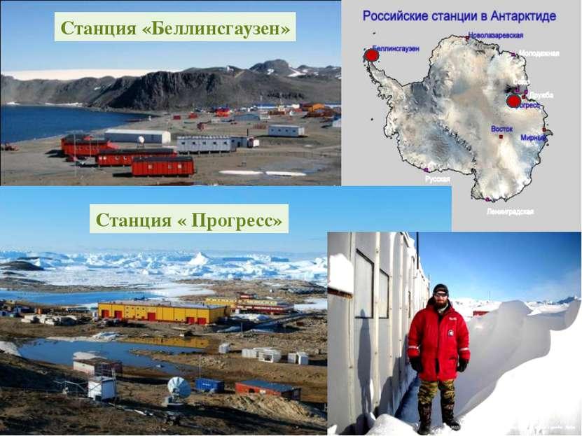 В 1968 году основана самая северная советская научная станция в Антарктиде — ...