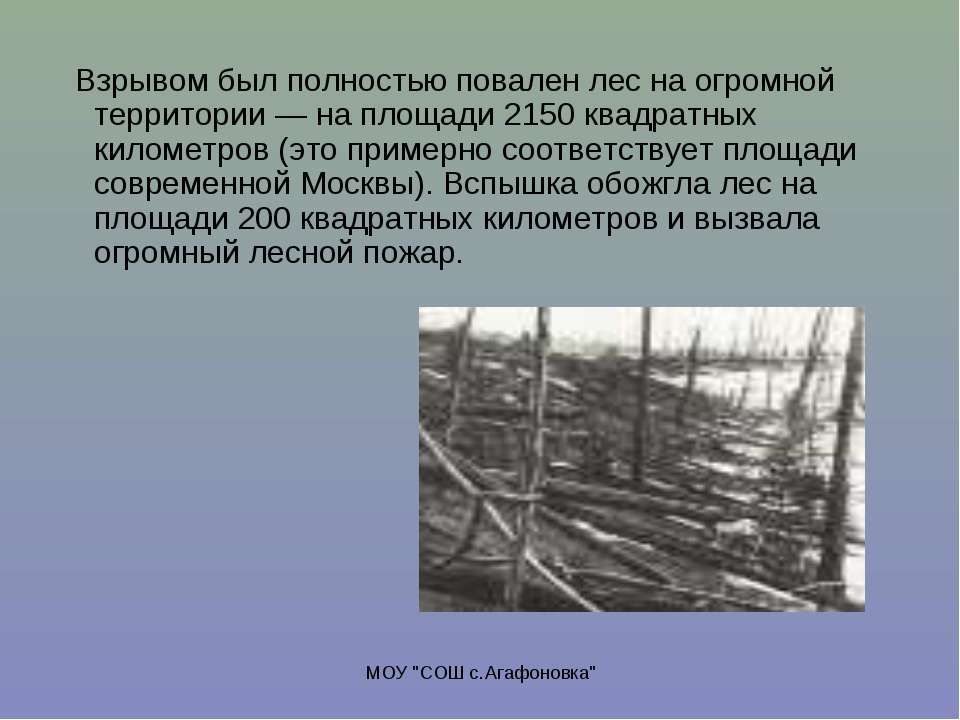 """МОУ """"СОШ с.Агафоновка"""" Взрывом был полностью повален лес на огромной территор..."""