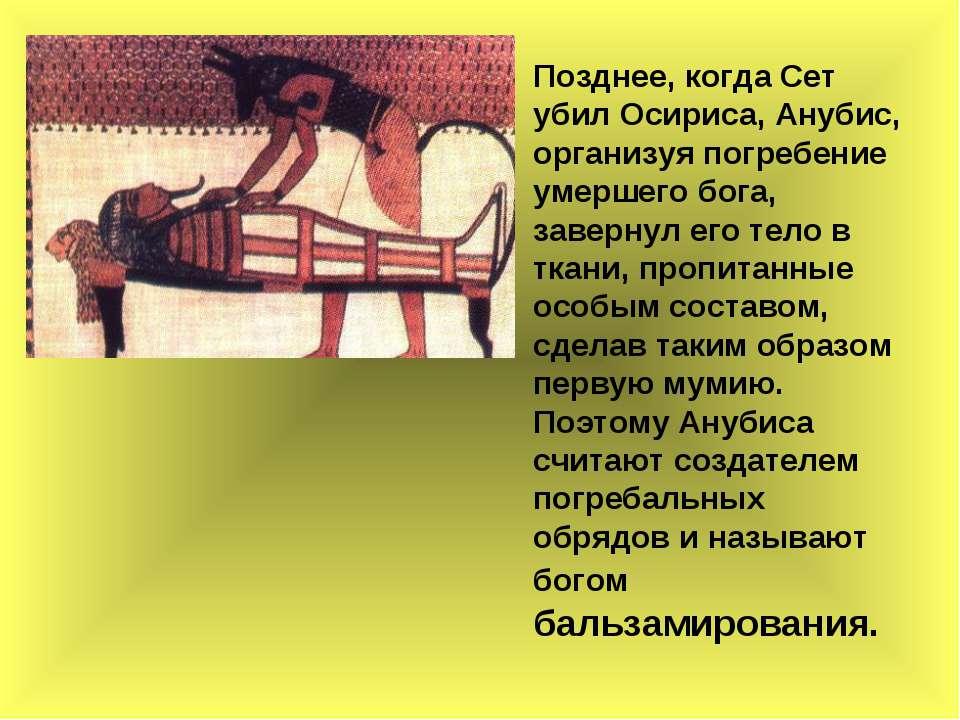 Позднее, когда Сет убил Осириса, Анубис, организуя погребение умершего бога, ...