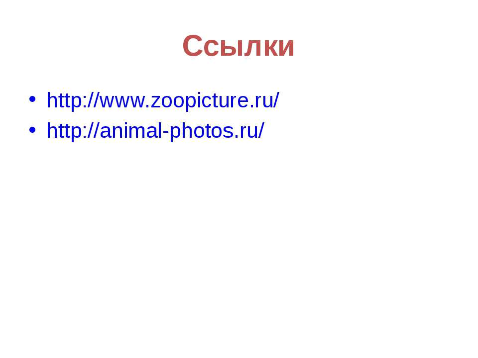 Ссылки http://www.zoopicture.ru/ http://animal-photos.ru/