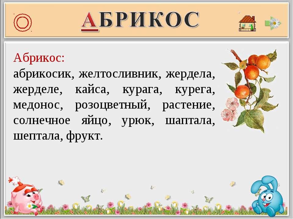 Абрикос: абрикосик, желтосливник, жердела, жерделе, кайса, курага, курега, ме...