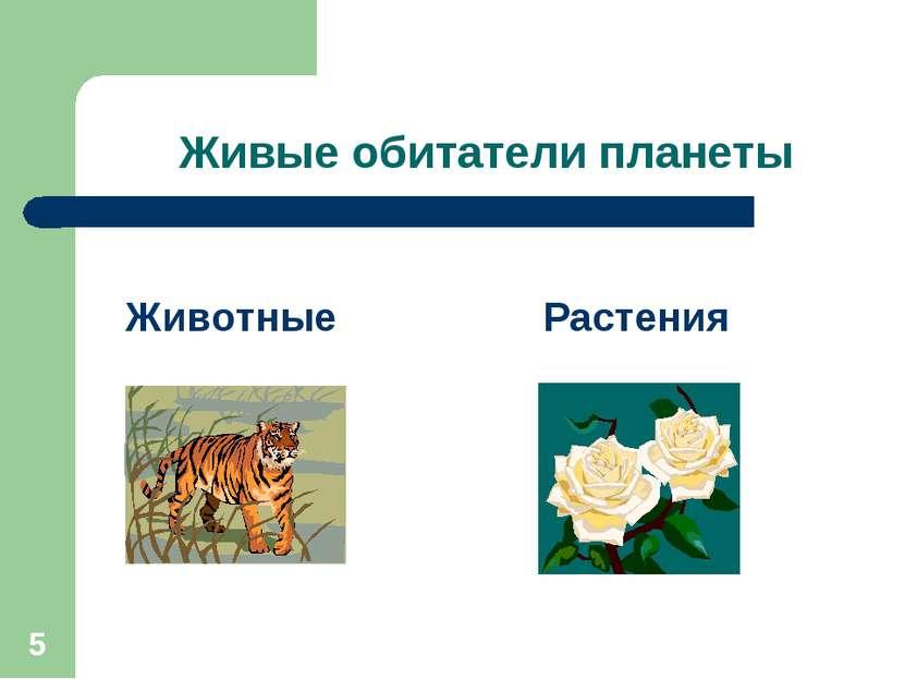 * Живые обитатели планеты Животные Растения