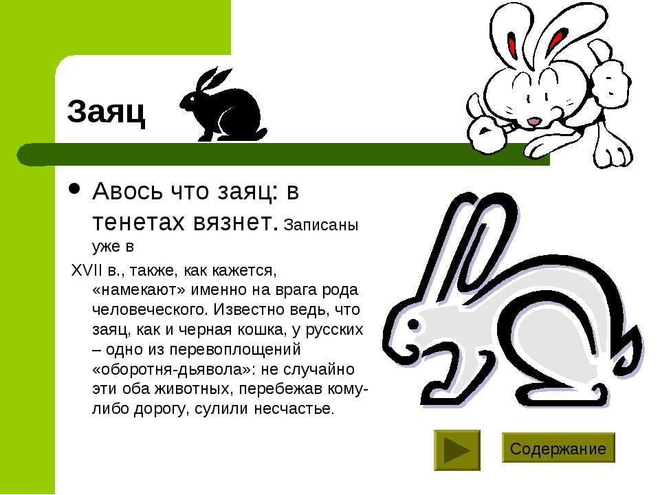 Заяц Авось что заяц: в тенетах вязнет. Записаны уже в XVII в., также, как каж...