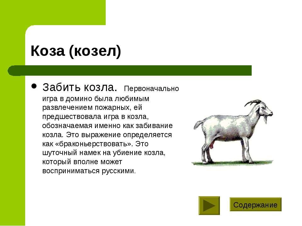 Коза (козел) Забить козла. Первоначально игра в домино была любимым развлечен...