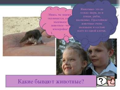 Миша, ты знаешь, оказывается, самое маленькое животное- это землеройка! Ты, н...