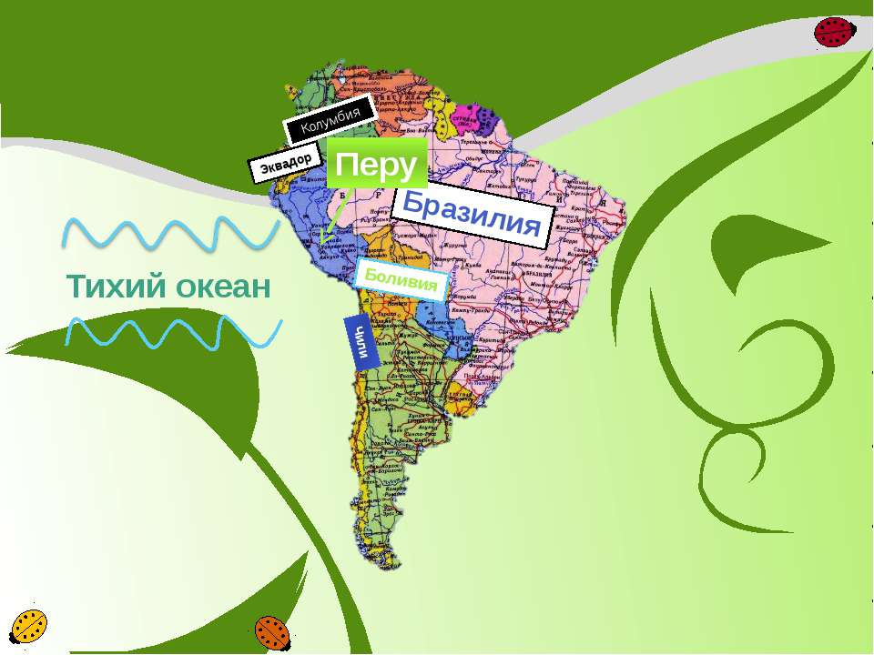 Бразилия Колумбия Эквадор Боливия Чили Перу Тихий океан