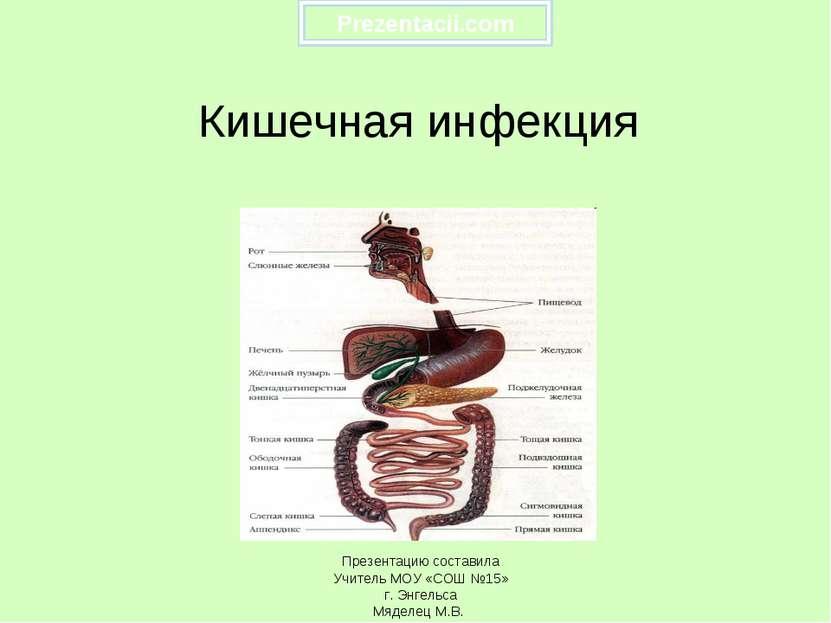 Кишечная инфекция Презентацию составила Учитель МОУ «СОШ №15» г. Энгельса Мяд...