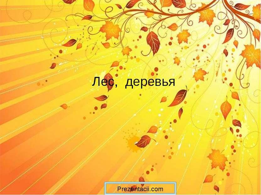 Лес, деревья Prezentacii.com