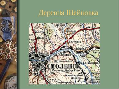 Деревня Шейновка