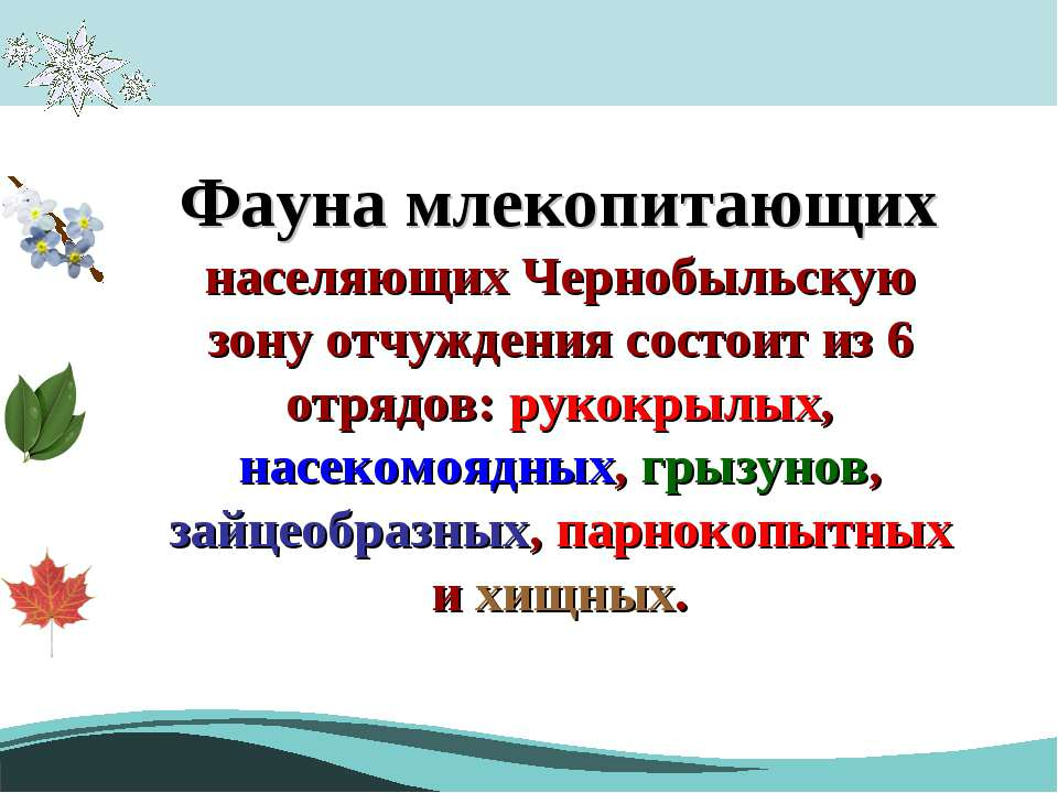 Фауна млекопитающих населяющих Чернобыльскую зону отчуждения состоит из 6 отр...