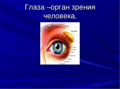 Глаза –орган зрения человека.