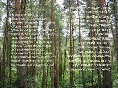 Но и на этом дело не заканчивается. Важнейшим компонентом лесных экосистем, в...