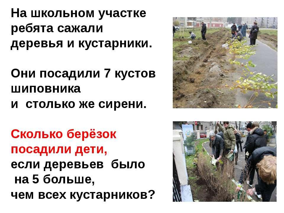 На школьном участке ребята сажали деревья и кустарники. Они посадили 7 кустов...