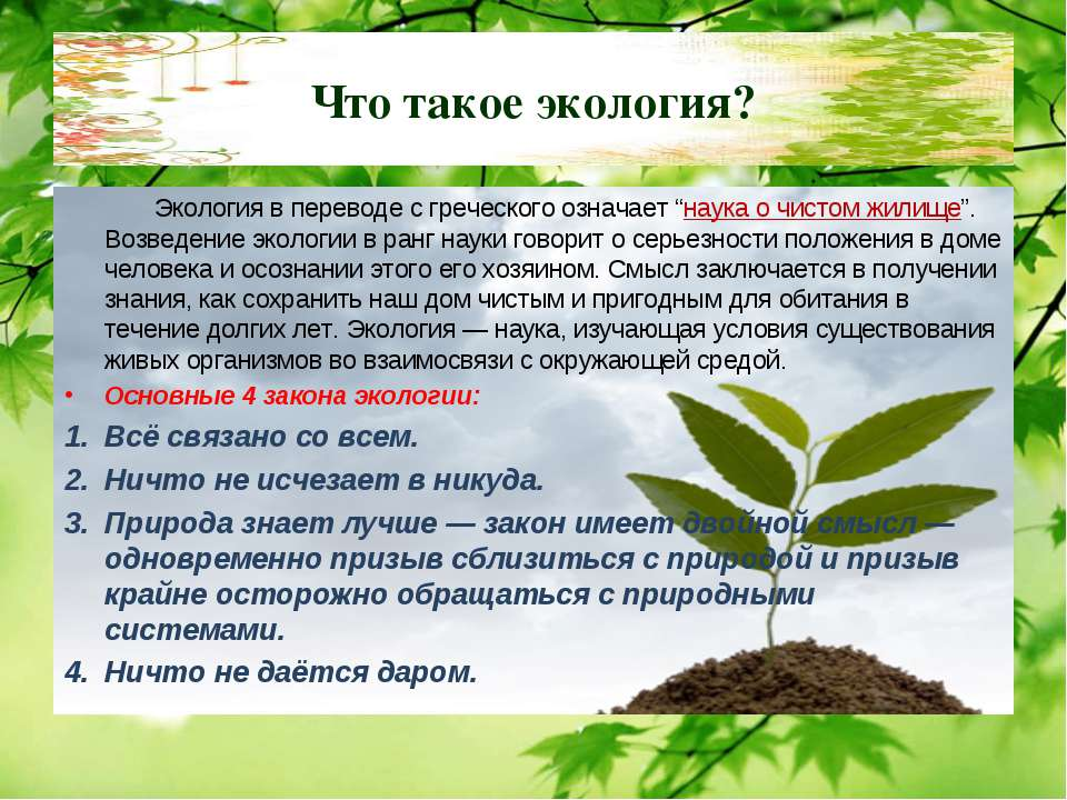 """Что такое экология? Экология в переводе с греческого означает """"наука о чистом..."""