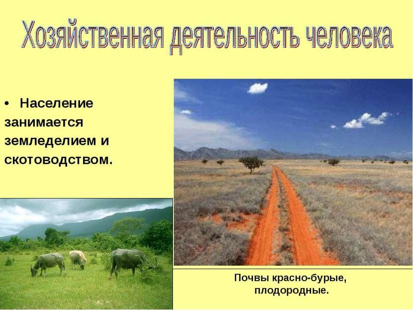 Почвы красно-бурые, плодородные. Население занимается земледелием и скотоводс...