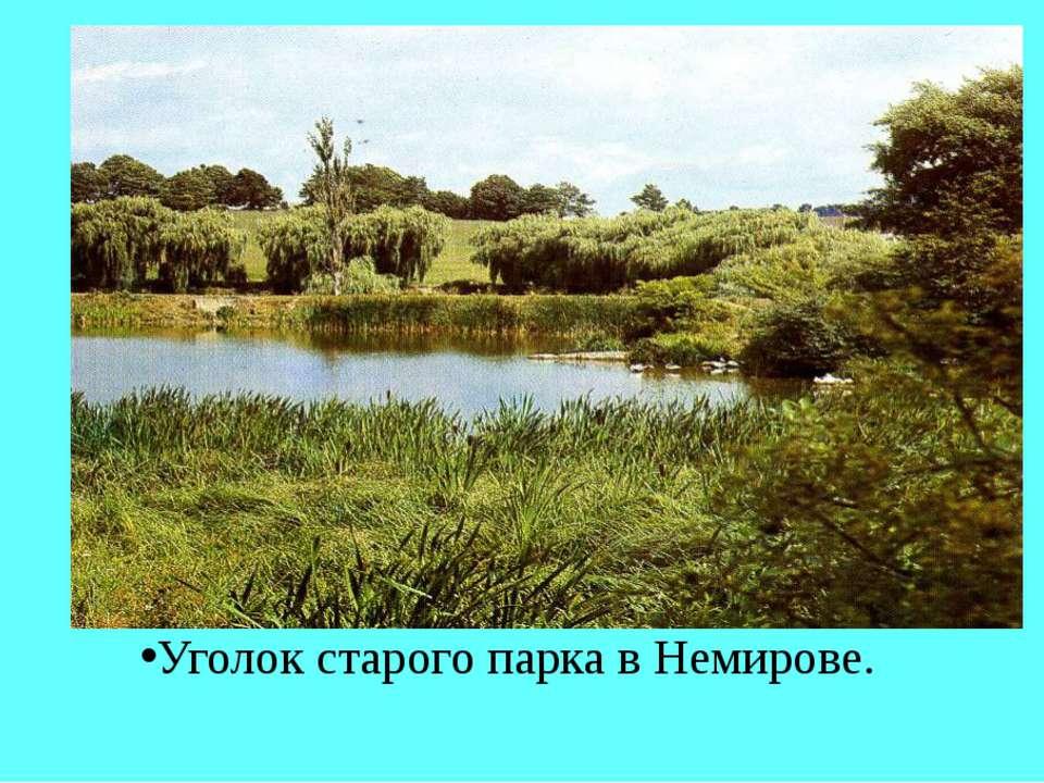 Уголок старого парка в Немирове.