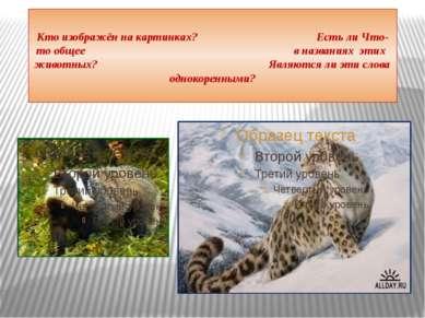 Кто изображён на картинках? Есть ли Что-то общее в названиях этих животных? Я...