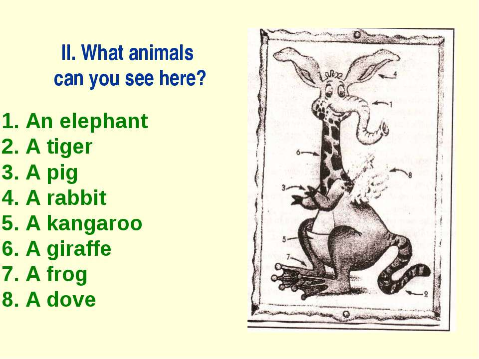 II. What animals can you see here? 1. An elephant 2. A tiger 3. A pig 4. A ra...
