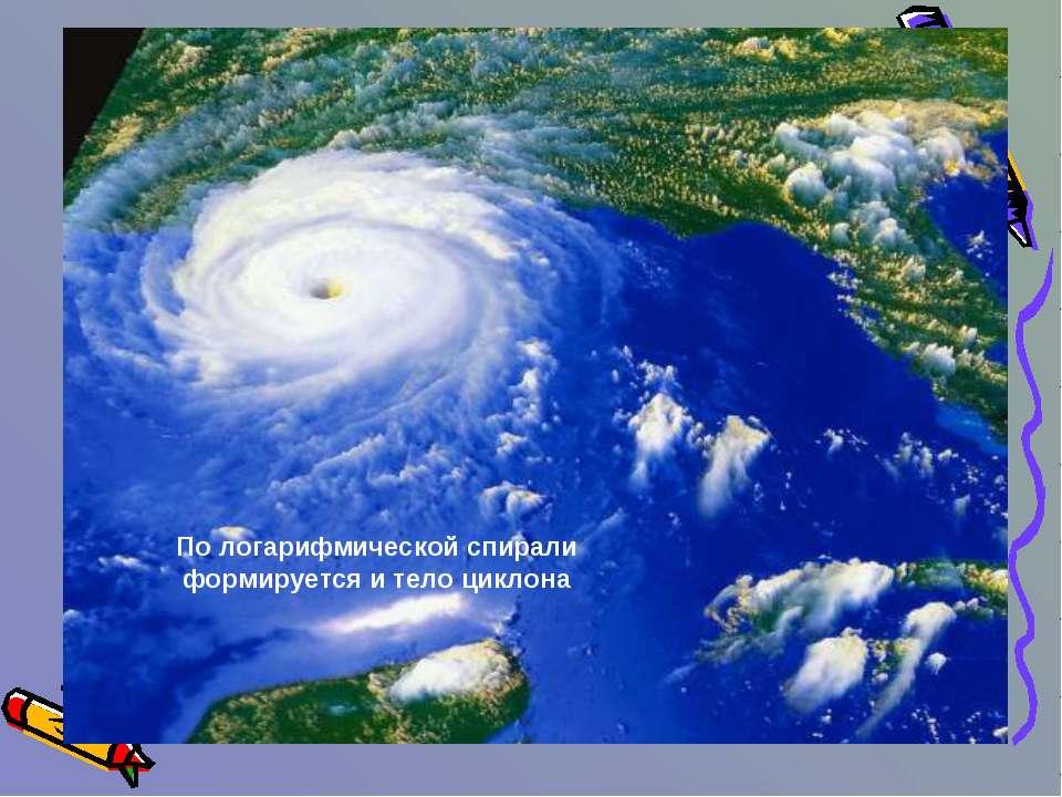 По логарифмической спирали формируется и тело циклона
