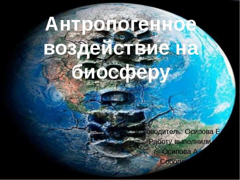 Антропогенное воздействие на биосферу Руководитель: Осипова Е.Г. Работу выпол...