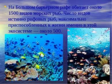 На Большом барьерном рифе обитает около 1500 видов морских рыб. Число видов и...