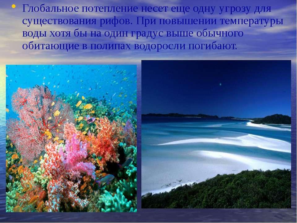 Глобальное потепление несет еще одну угрозу для существования рифов. При повы...