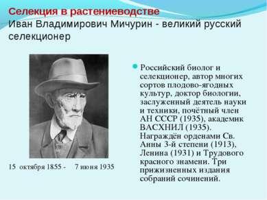 Селекция в растениеводстве Иван Владимирович Мичурин - великий русский селекц...