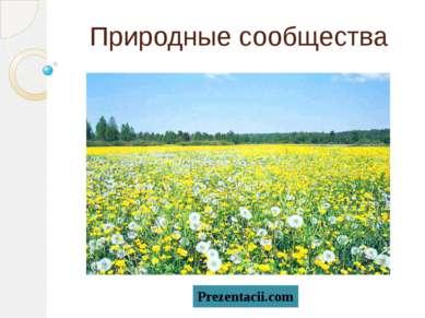 Природные сообщества