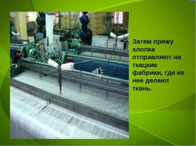 Затем пряжу хлопка отправляют на ткацкие фабрики, где из нее делают ткань.