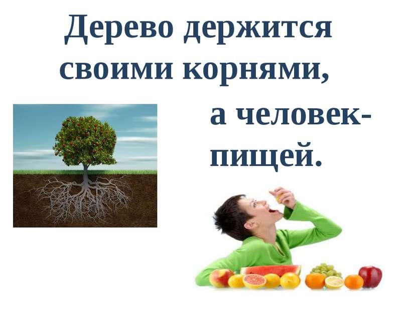 Дерево держится своими корнями, . а человек- пищей.