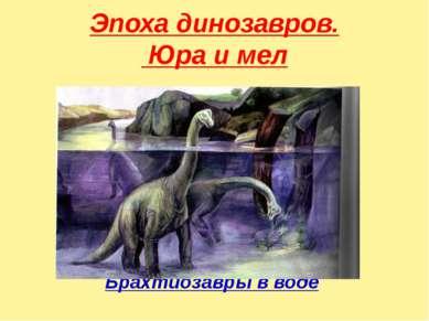 Эпоха динозавров. Юра и мел Брахтиозавры в воде