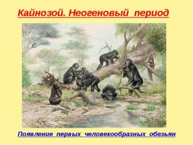 Кайнозой. Неогеновый период Появление первых человекообразных обезьян