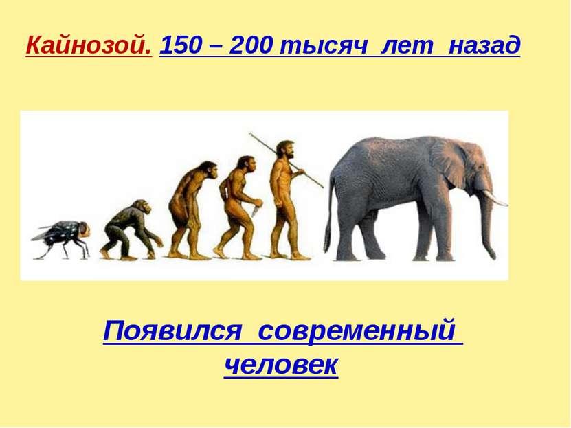 Кайнозой. 150 – 200 тысяч лет назад Появился современный человек