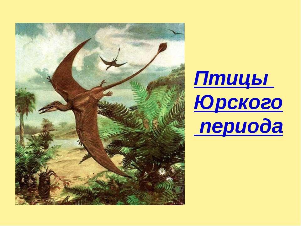 Птицы Юрского периода
