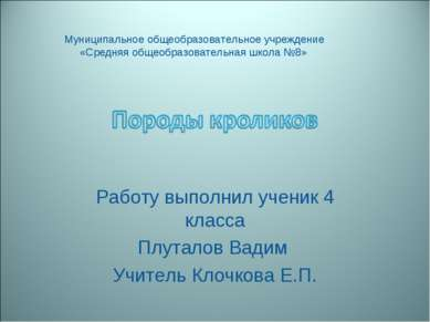 Работу выполнил ученик 4 класса Плуталов Вадим Учитель Клочкова Е.П. Муниципа...