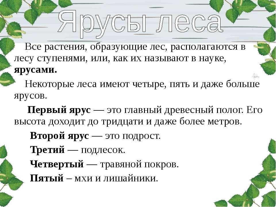 Все растения, образующие лес, располагаются в лесу ступенями, или, как их наз...