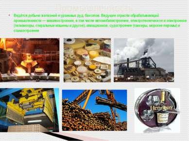 Ведётся добыча железной и урановых руд, бокситов. Ведущие отрасли обрабатываю...