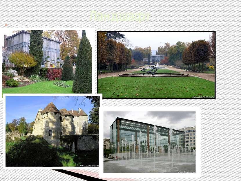 Ботанический сад Руана Дворцово-парковый комплекс Версаль Дендрологический са...