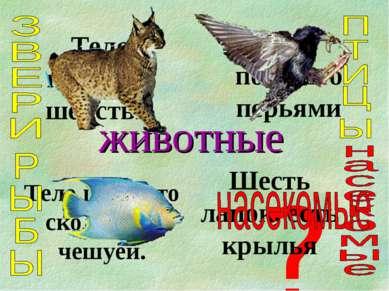 животные Тело покрыто шерстью Тело покрыто перьями Тело покрыто скользкой чеш...