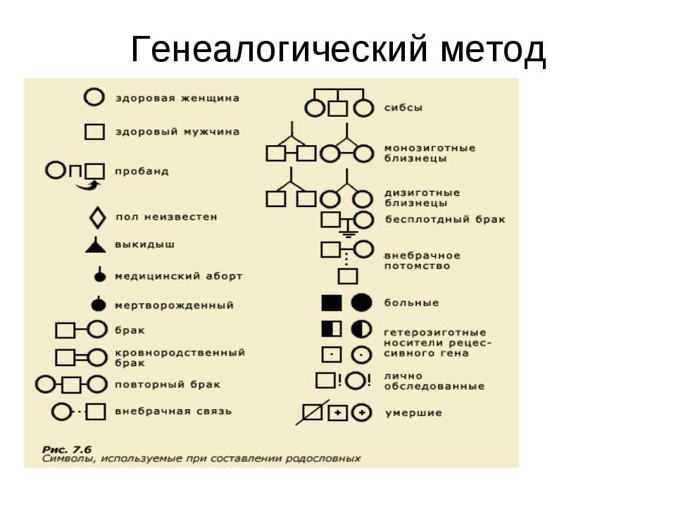 Генеалогический метод