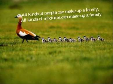 All kinds of people can make up a family, All kinds of mixtures can make up a...