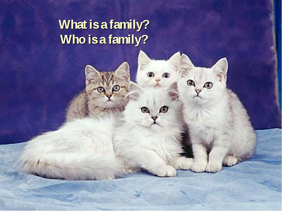What is a family? Who is a family?