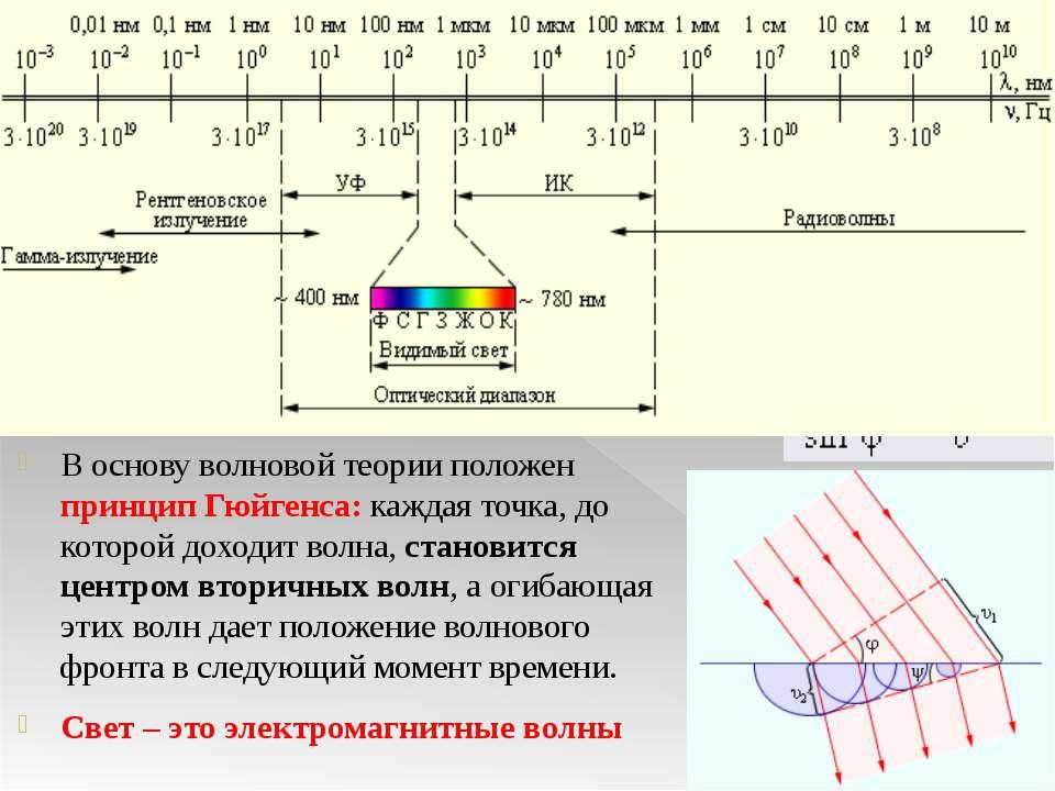 Волновые свойства света В основу волновой теории положен принцип Гюйгенса: ка...