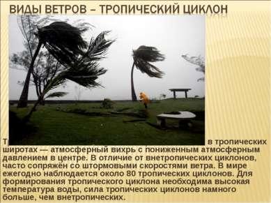 Тропический циклон — циклон, образовавшийся в тропических широтах — атмосферн...