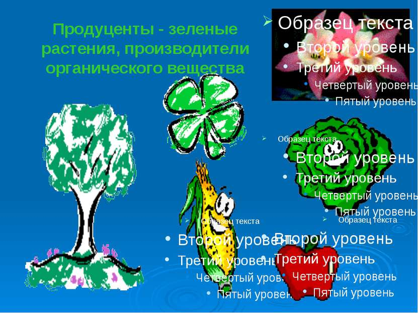 Продуценты - зеленые растения, производители органического вещества