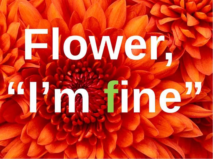 """Flower, """"I'm fine"""""""