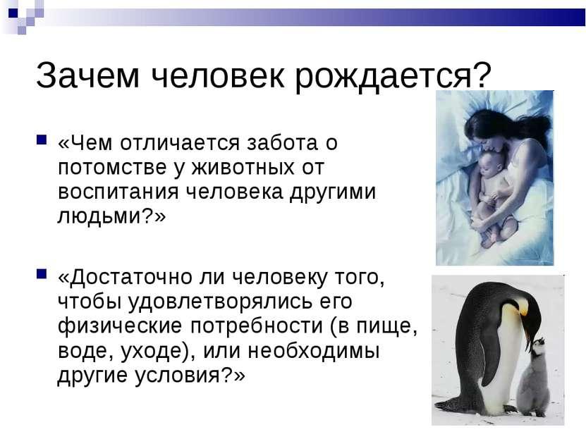 Зачем человек рождается? «Чем отличается забота о потомстве у животных от вос...