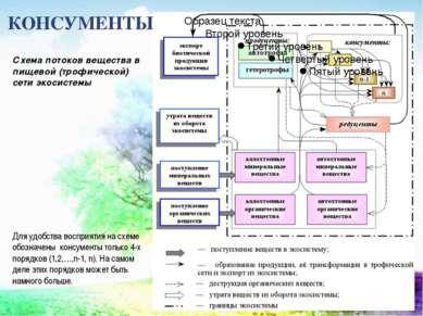 КОНСУМЕНТЫ Схема потоков вещества в пищевой (трофической) сети экосистемы Для...