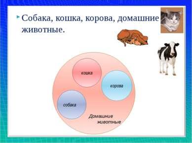 Домашние животные кошка корова собака Собака, кошка, корова, домашние животные.